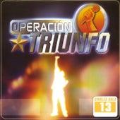 Operación Triunfo (Singles Gala 13) de Various Artists