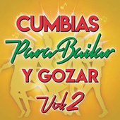 Cumbias Para Bailar Y Gozar Vol. 2 de Various Artists