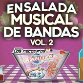 Ensalada Musical De Bandas Vol. 2 de Various Artists