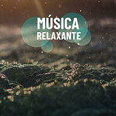 Músicas Relaxantes de Various Artists
