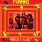 Ducks In Flight by Patto