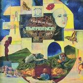 Emergence by Paul Brett