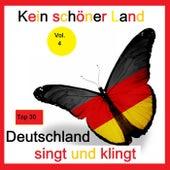 Top 30: Kein schöner Land - Deutschland singt und klingt, Vol. 4 de Various Artists