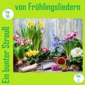 Top 30: Ein bunter Strauß von Frühlingsliedern, Vol. 1 de Various Artists