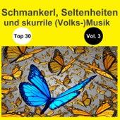 Top 30: Schmankerl, Seltenheiten und skurrile (Volks-)Musik, Vol. 3 de Various Artists