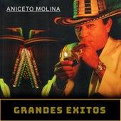 Grandes Exitos de Aniceto Molina