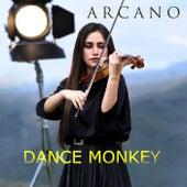 Dance Monkey von Arcano