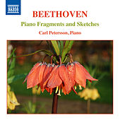 Beethoven: Piano Fragments & Sketches von Carl Petersson