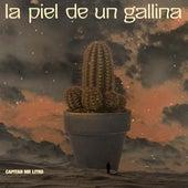La Piel de un Gallina by Capitan Mr Litro