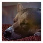Lullabies for Deep Sleep and Relaxation, Vol. 4 by Baby Sleep Sleep
