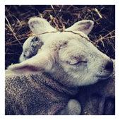 Lullabies for Deep Sleep and Relaxation, Vol. 5 by Baby Sleep Sleep