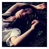 Lullabies for Deep Sleep and Relaxation, Vol. 2 by Baby Sleep Sleep