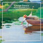 Enescu: Piano Quartets 1 & 2 de Tammuz Piano Quartet