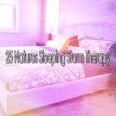 25 Natures Sleeping Storm Therapy de Thunderstorm Sleep
