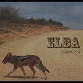 Diplodocus by Elba