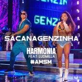 Sacanagenzinha de Harmonia Do Samba