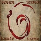 Karma's a Bitch by Seismic Anamoly