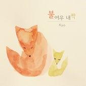 불여우 내 짝 by Kyo