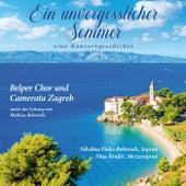 Ein unvergesslicher Sommer (Eine Konzertgeschichte) de Belper Chor