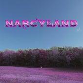 Narcyland de Narcy