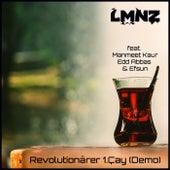 Revolutionärer 1.Çay (Demo) by Lmnz