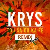 Tou Sa Ou Ka Fè (Kompa Remix) de Krys