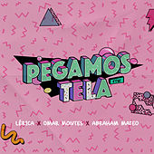 Pegamos Tela by Lerica