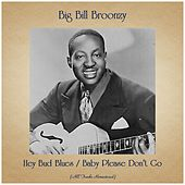 Hey Bud Blues / Baby Please Don't Go (All Tracks Remastered) by Big Bill Broonzy