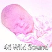 46 Wild Sound de White Noise Babies
