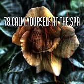 78 Calm Yourself at the Spa by Trouble Sleeping Music Universe