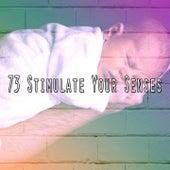 73 Stimulate Your Senses by Baby Sleep Sleep