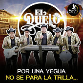 Por una Yegua No Se para la Trilla by Grupo el duelo