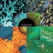 We Are von Colour Haze