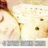 40 Natures Soothing Chorus by Deep Sleep Music Academy