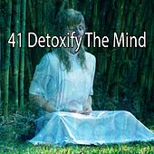 41 Detoxify the Mind by Yoga Music