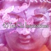 43 Tai Chi Inspirations de Musica Relajante