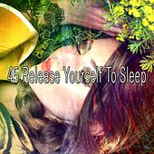 45 Release Yourself to Sleep de Nature Sounds Nature Music (1)