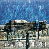 47 A Welcome Nights Rest de Calming Sounds