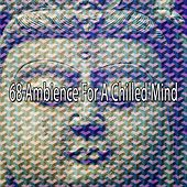 68 Ambience for a Chilled Mind by Exam Study Classical Music Orchestra