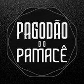 Pagodão do Pamacê (Ao Vivo) by Pamacê