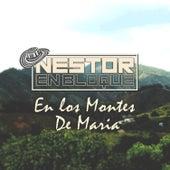 En los Montes de Maria de Nestor en Bloque