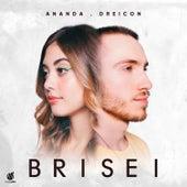 Brisei de Ananda
