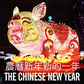 The Chinese New Year (農曆新年新的一年) by Various Artists