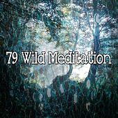 79 Wild Meditation de Deep Sleep Meditation