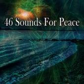 46 Sounds for Peace de Meditation Spa