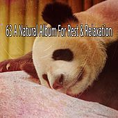 63 A Natural Album for Rest & Relaxation by Baby Sweet Dream (1)
