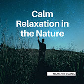 Calm Relaxation in the Nature by Relaxation Channel
