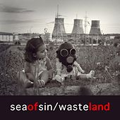 Wasteland by sea of sin