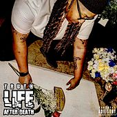 Life After Death by Truth