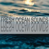 Fresh Ocean Sounds by Ocean Sounds (1)